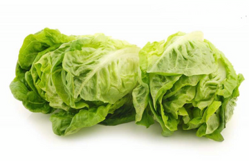 Little Gem Lettuce (Two)