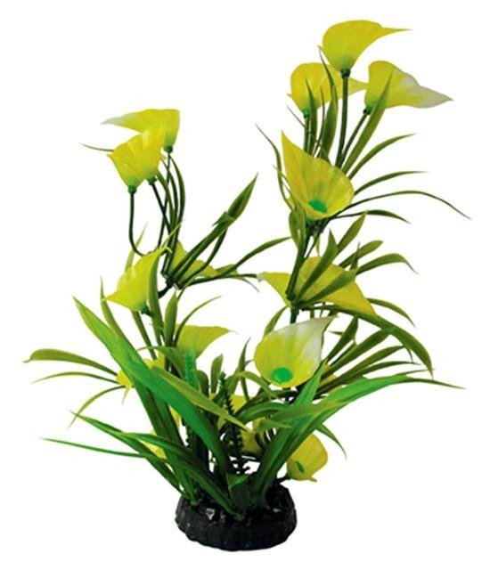 "12"" Bunch Plant Lily - Nature Aquariums"