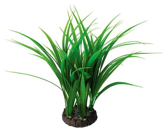 "15"" Bunch Plant Rush - Nature Aquariums"