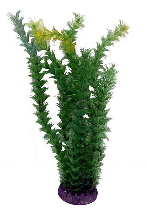 "15"" Economy Plant - Nature Aquariums"