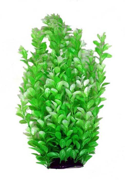 "18"" Deluxe Plant - Nature Aquariums"