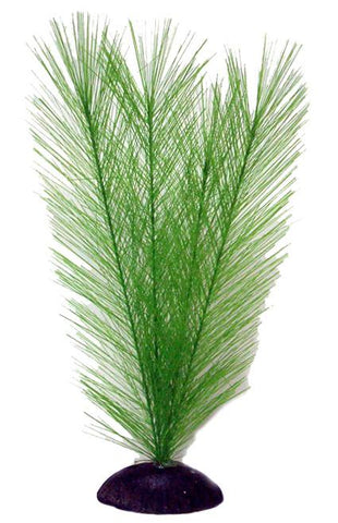 "12"" Feather Fern - Nature Aquariums"