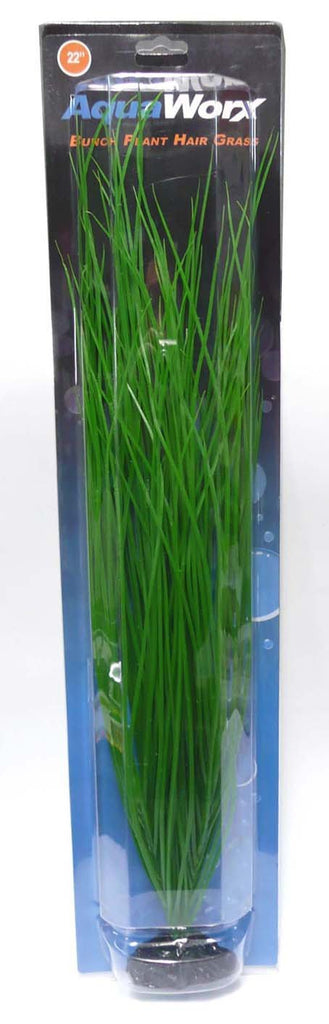 "22"" Bunch Plant Hairgrass - Nature Aquariums"