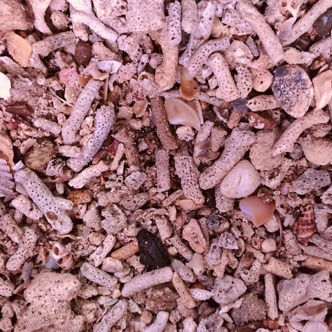Natural Aragonite Coral Bones - Rubble 10kg - Nature Aquariums