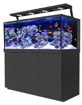 Red Sea MAX S 650 Complete Reef System LED - Black 650 litres - Nature Aquariums