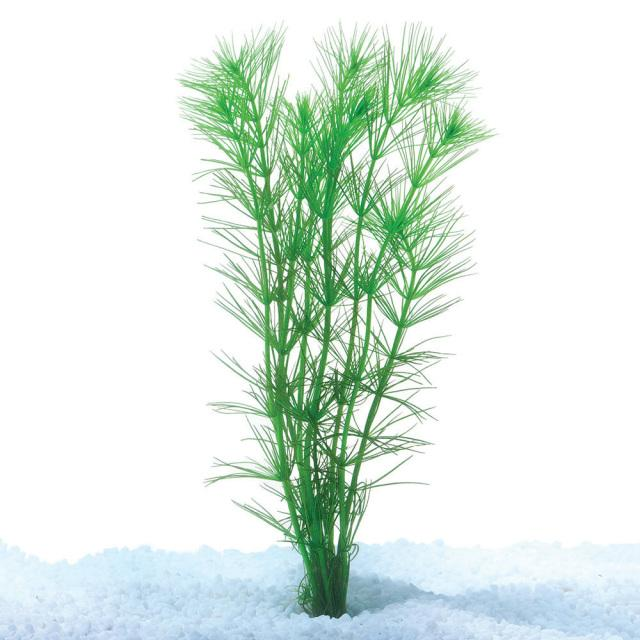 Pine Needles Bunch - Nature Aquariums