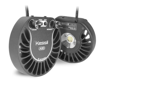 Kessil A80-TB Tuna Blue Marine Spectrum - Nature Aquariums