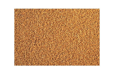 ADA Nature Aquarium AP-1 Gold Fish Food 25g - Nature Aquariums