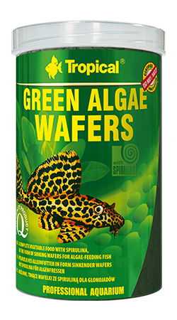 Green Algae Wafers (10 mm disc)tin 250ML/113G - Nature Aquariums