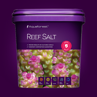 Aquaforest Reef Salt 10kg - Nature Aquariums