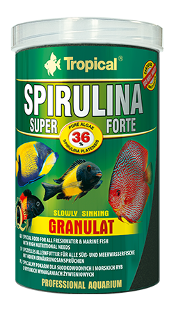 Super Spirulina Forte Granulat- 36% Spirulina (2mm granulat)tin 100ML/60G - Nature Aquariums