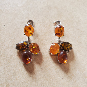 Small Multi Color Baltic Amber Earring