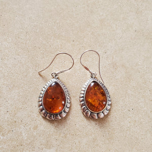 Teardrop Baltic Amber Earring