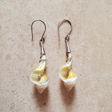 Load image into Gallery viewer, Shell Earrings with Silver