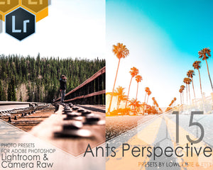 New! 15 Ants Perspective Presets for Lightroom And Camera Raw - Preset Bundle for Desktop Use - Xmp - Lrtemplate