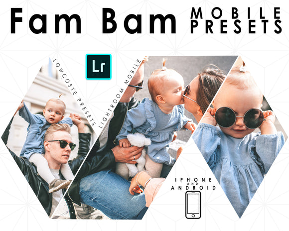 Mobile Lightroom Preset, Fam Bam Preset, 5 Bright and Sharp Presets, For Instagram And Bloggers, Blue and Cool Presets Family Photos