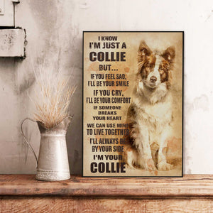 Border Collie Old Paper Canvas
