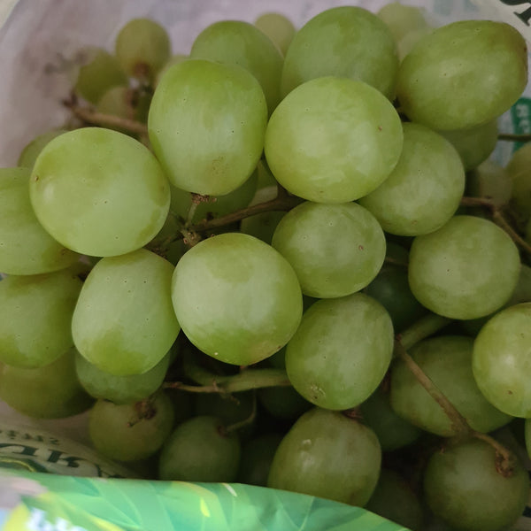 Green Grapes $9.99/KG