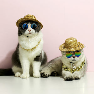 """Fancy Pet Shades"""