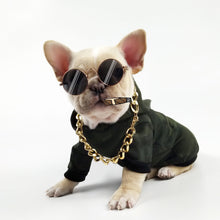 "Load image into Gallery viewer, ""Fancy Pet Shades"""