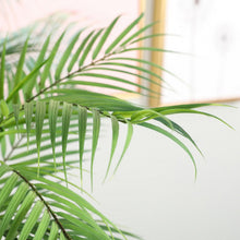 "Load image into Gallery viewer, ""Tropical Fake"" Green palm"