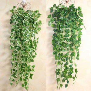"""Ivy"" Green hanging plant"