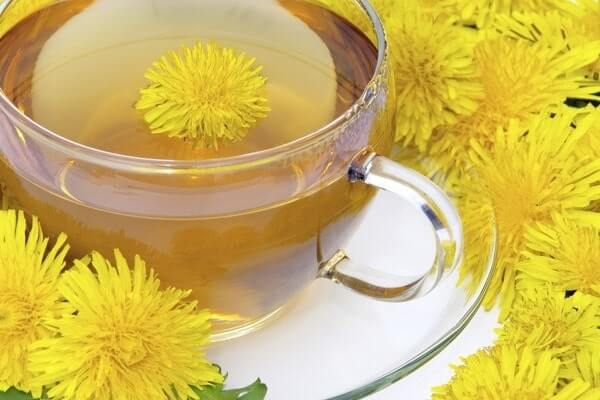 Dandelion Tea Could Be Good for You