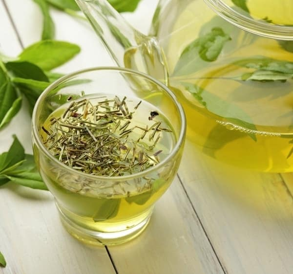 Myths and Facts of Drinking Green Tea