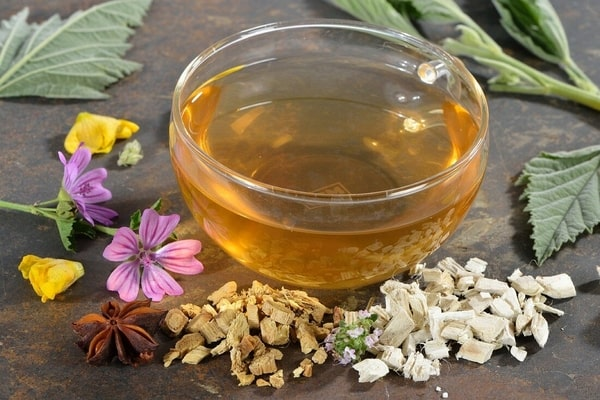 Herbal tea with marsh mallow leaves