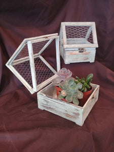 Rustic Wood & Metal Mesh Terrariums
