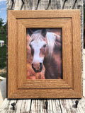 DIY Horse Hair Picture Frame With Groove Cut For Your Horse Hair