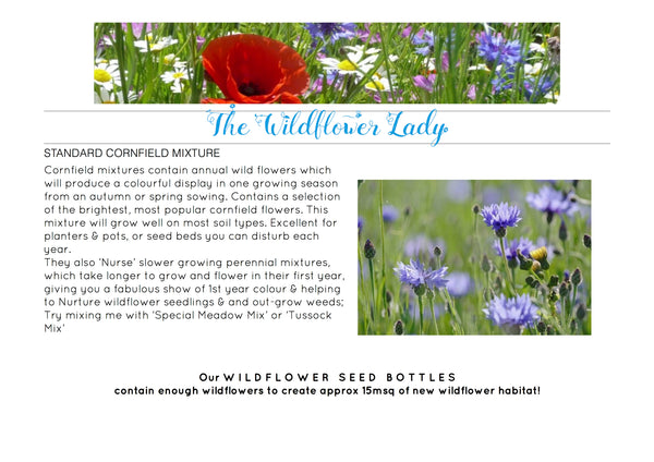 Wildflower Bottle Seeds