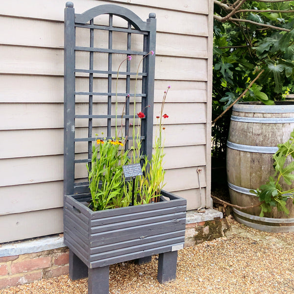 Trellis Planter in Charcoal Grey
