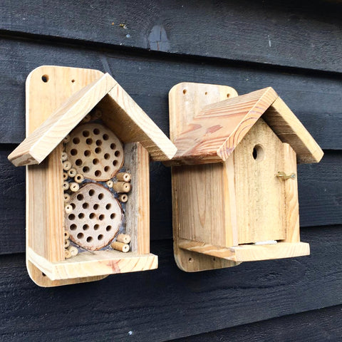 Plain Rustic 🐝 Bee Box and Bird Box 🐦