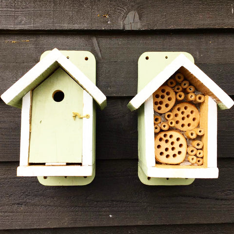 Sapling green 🐦 Bird Box & 🐝 Bee Hotel