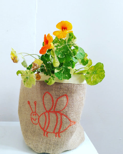Hessian Eco Pot, Embroidered, BEE DRAWING