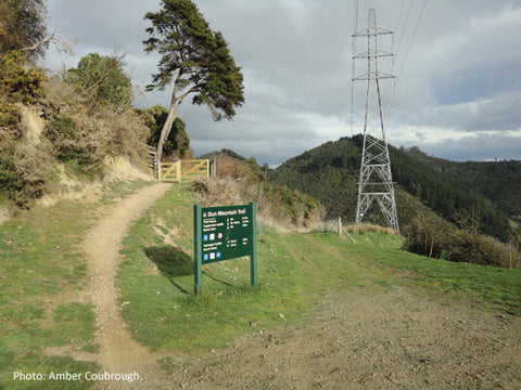 Chill Dirt Features Dun Mountain Trail By Reuben Williams