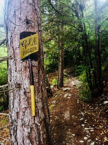 Chill Dirt Features Gold Digger Trail Queenstown
