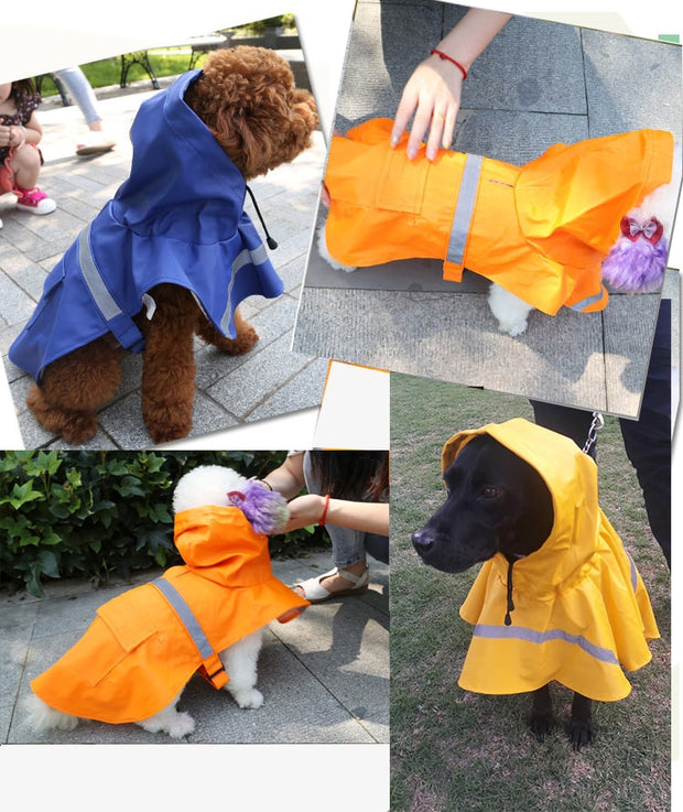 Dog Large Rain Coat