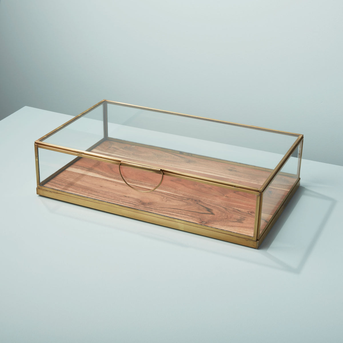 Glass Display Case with Wood Base Large