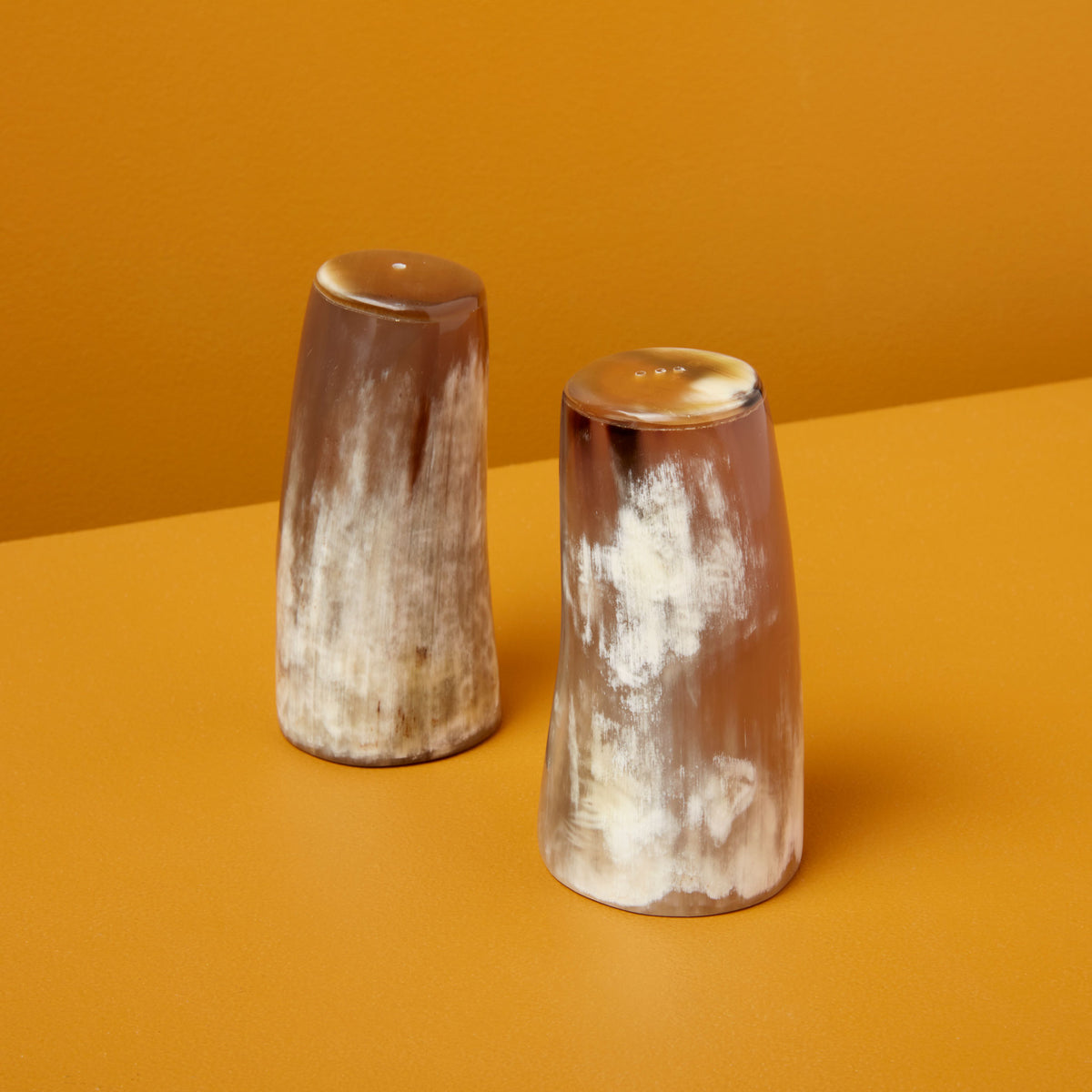 Horn Salt & Pepper Set, Large