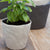 Tam Small Stoneware Planter, White