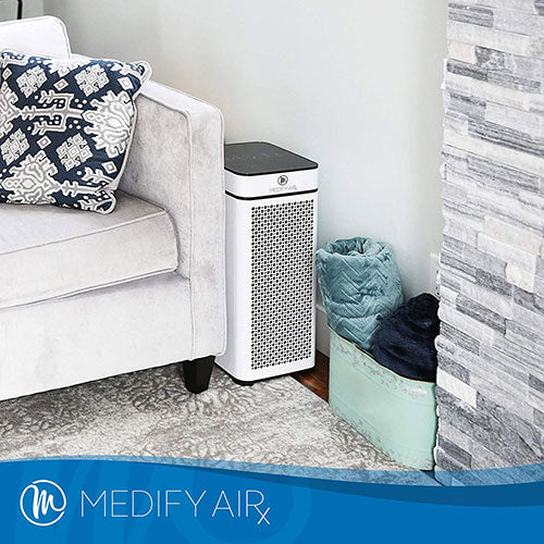 large air purifier for living room