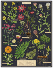 Load image into Gallery viewer, Cavallini & Co. herbarium 1000 piece vintage puzzle completed