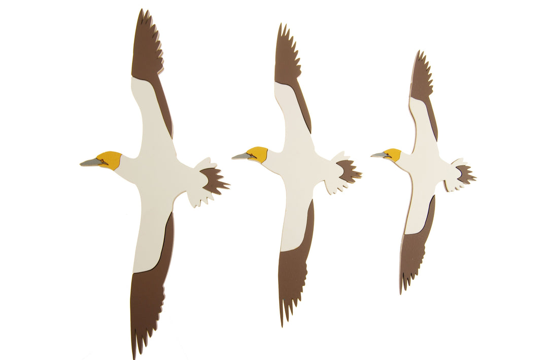 Airways - Gannet Trio Set