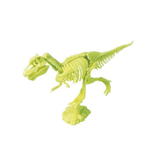 Jeanny dig and discover dinosaur skeleton trex assembled