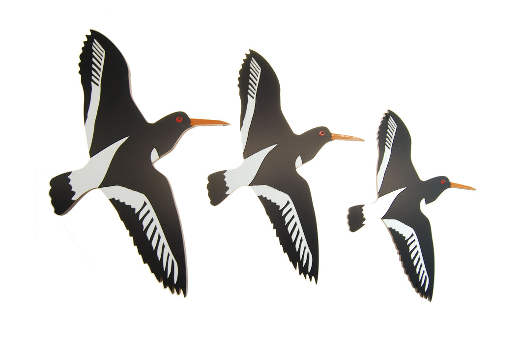 Airways - Oyster Catcher Trio Set