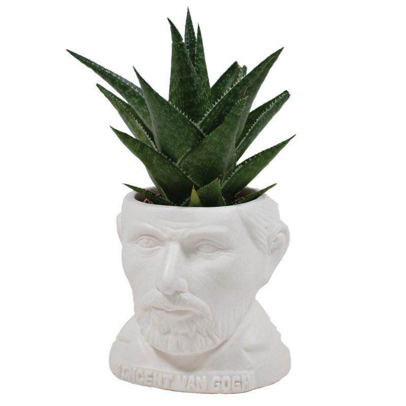 Unemployed Philosophers Guild Van Gogh fertile mind planter pot