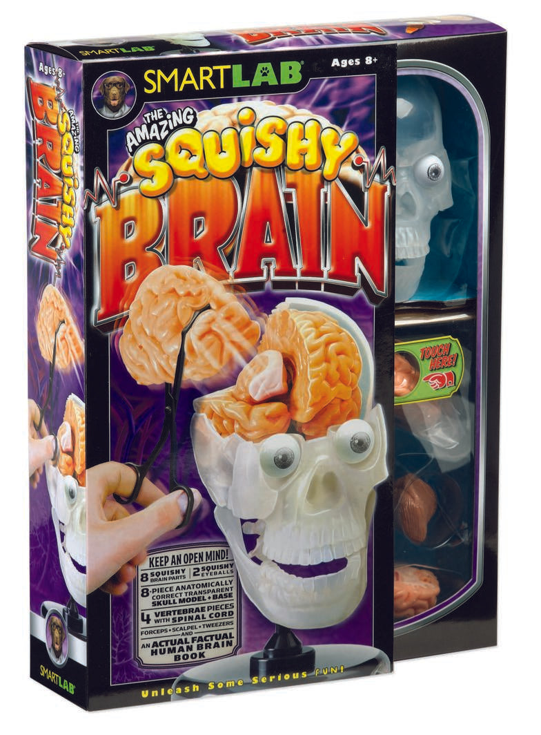 The amazing squishy brain box set