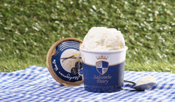 Salcombe Dairy Vanilla Ice Cream